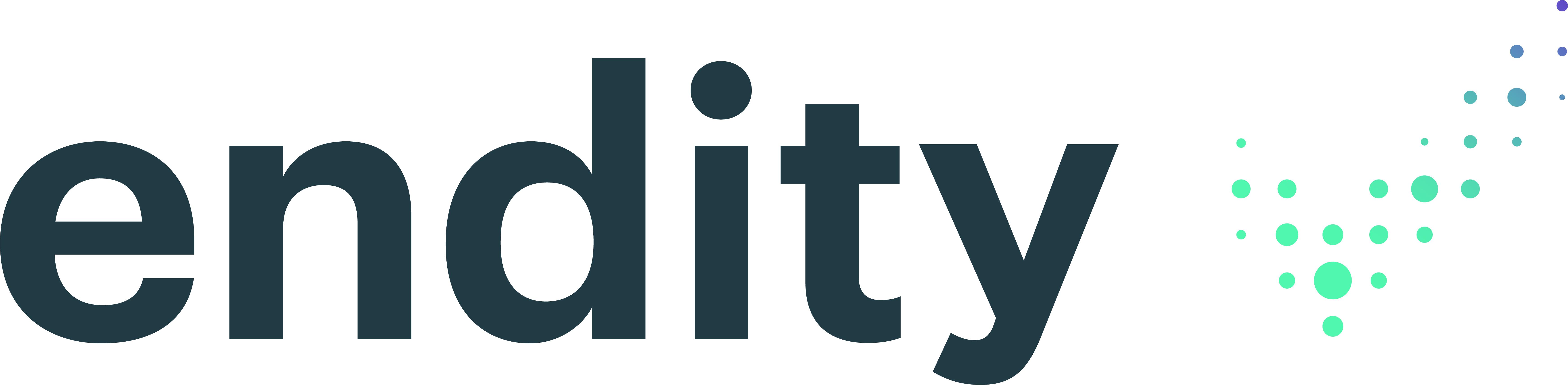 logo endity